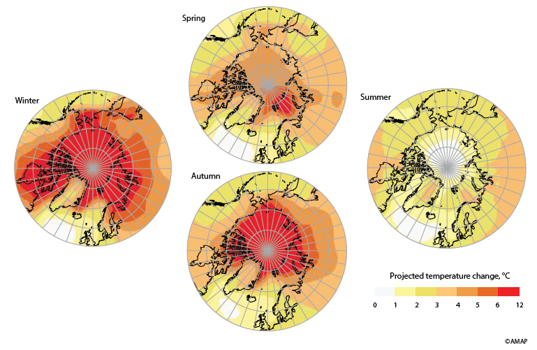 Artic projected temperature change.png